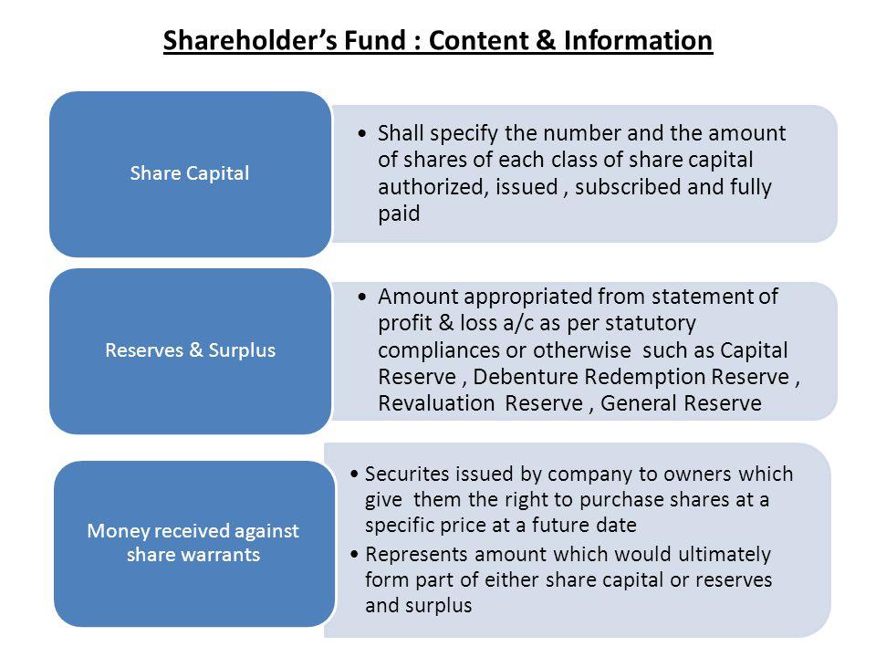 Shareholder's Fund : Content & Information