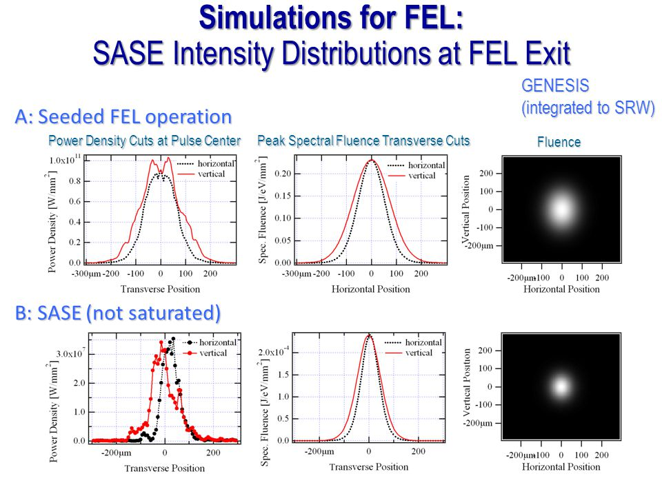 SASE Intensity Distributions at FEL Exit