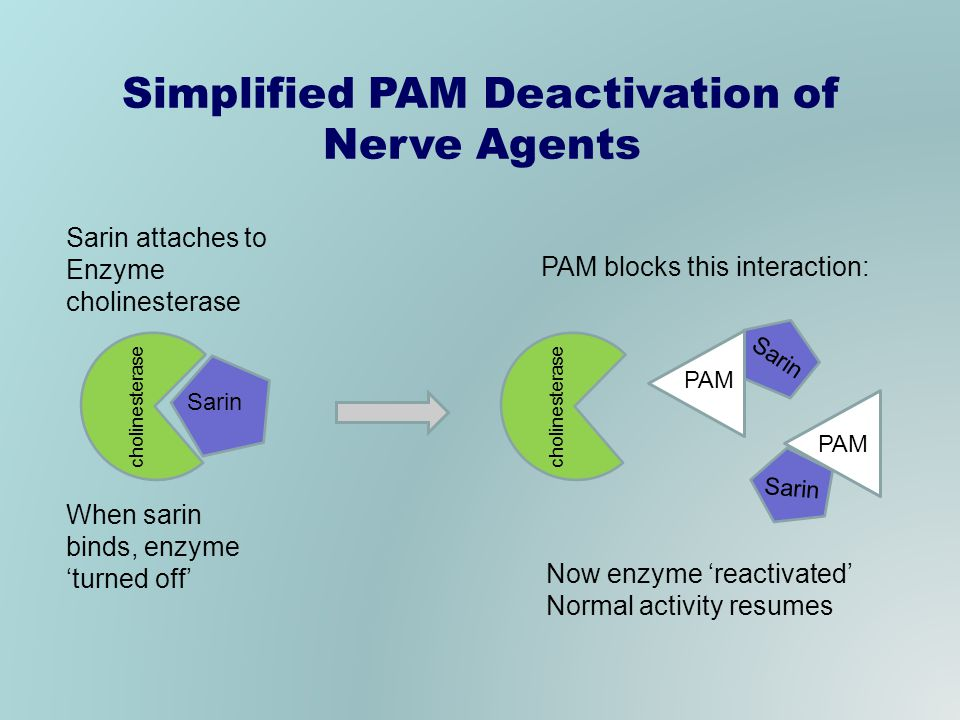 Simplified PAM Deactivation of Nerve Agents