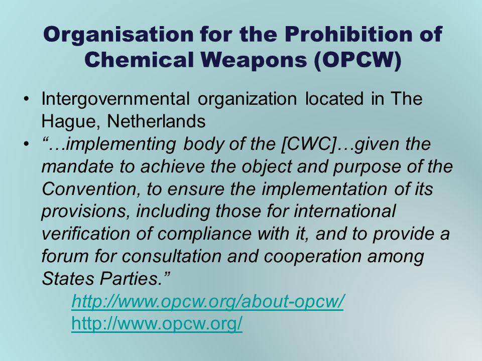 Organisation for the Prohibition of Chemical Weapons (OPCW)
