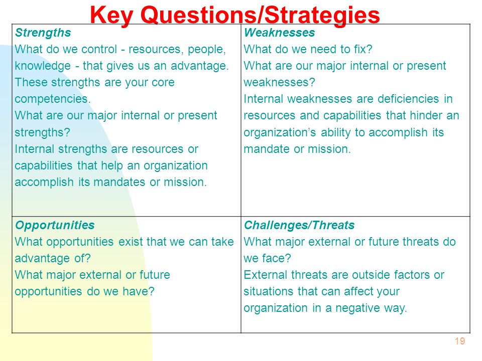 Key Questions/Strategies