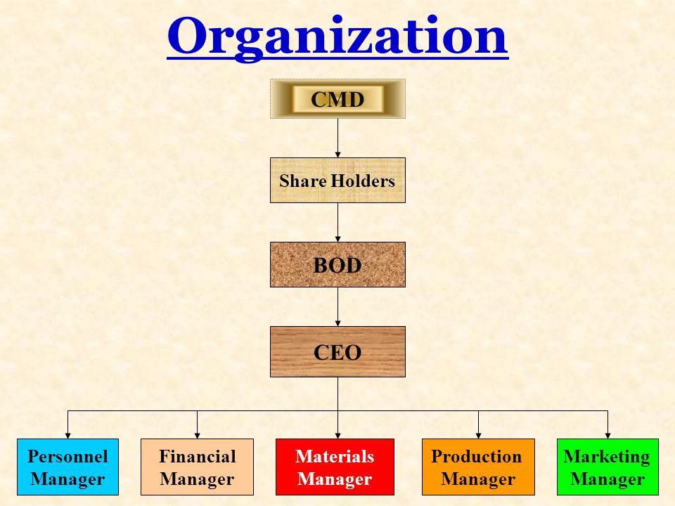 Organization CMD BOD CEO Share Holders Personnel Manager Financial