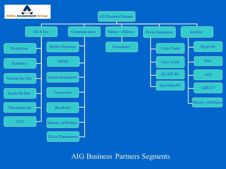 AIG Business Partners Segments