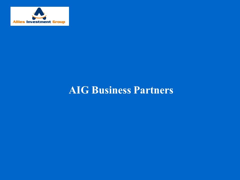 AIG Business Partners