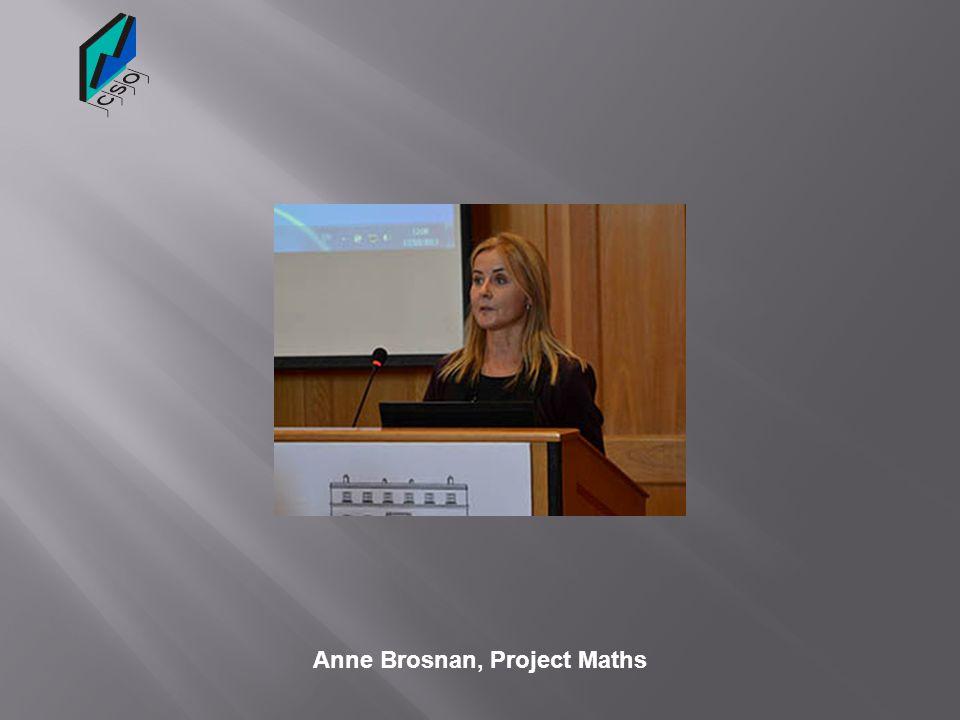 Anne Brosnan, Project Maths