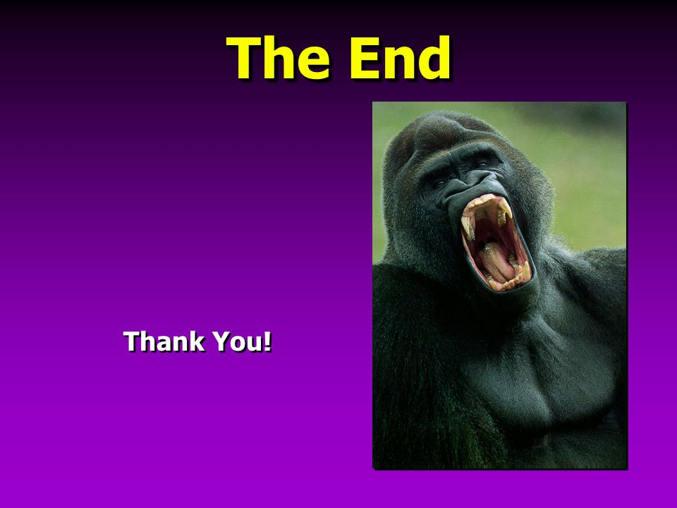 The End Thank You!  1999 American Electroplaters & Surface Finishers' Society, Inc.