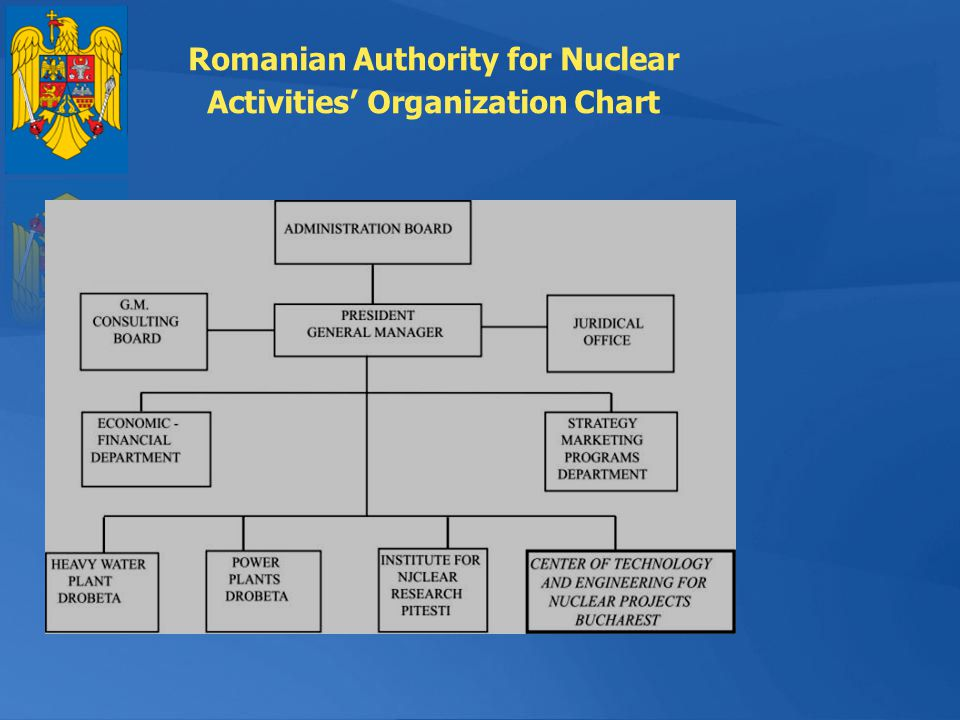 Romanian Authority for Nuclear Activities' Organization Chart