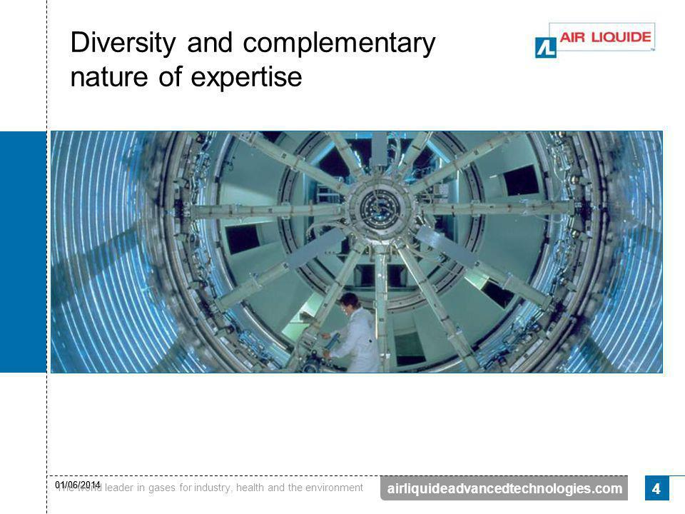 Diversity and complementary nature of expertise