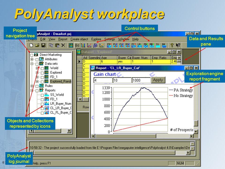 PolyAnalyst workplace