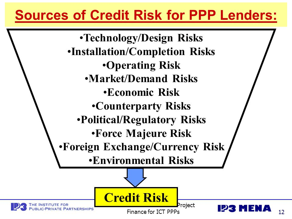 Sources of Credit Risk for PPP Lenders: