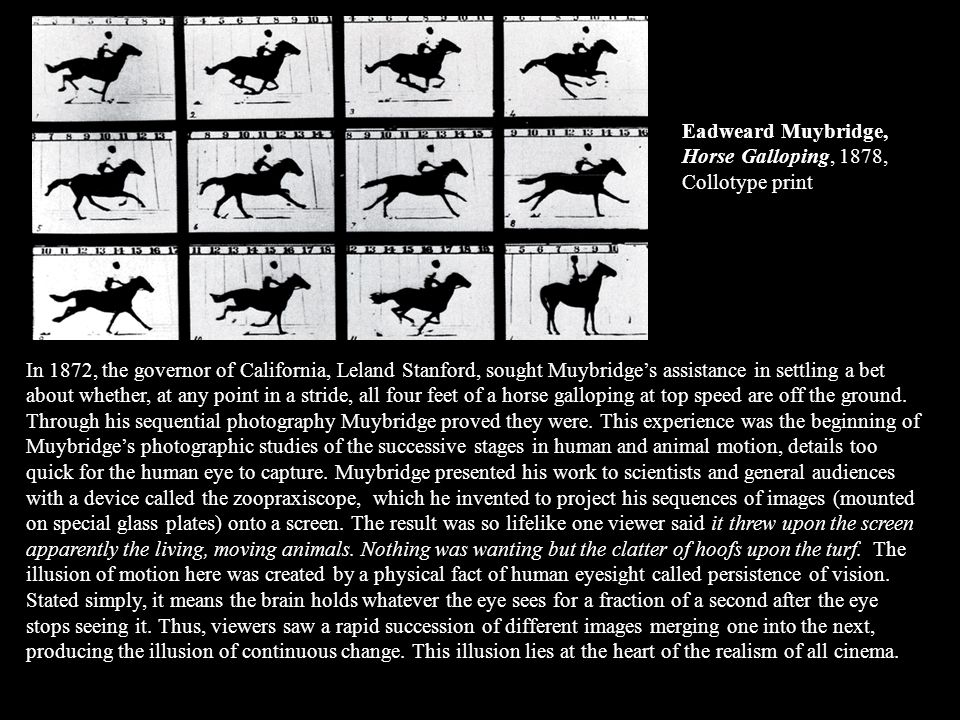 Eadweard Muybridge, Horse Galloping, 1878, Collotype print