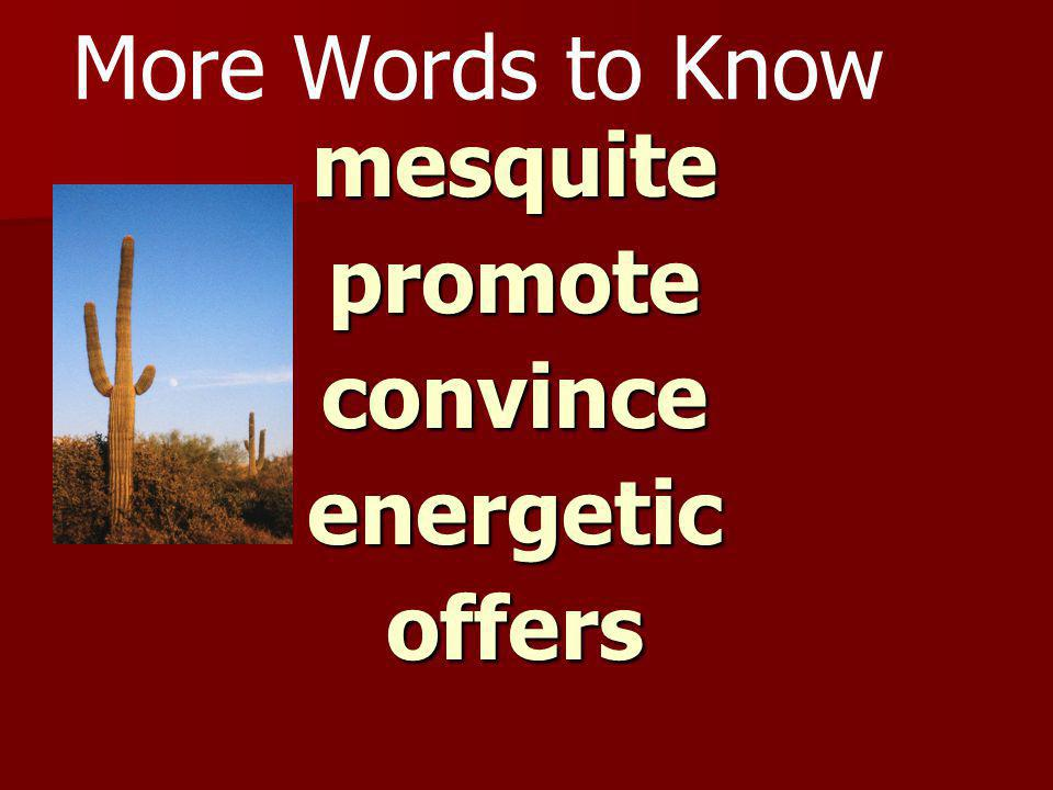 More Words to Know mesquite promote convince energetic offers
