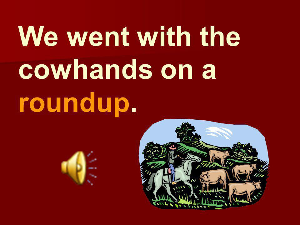 We went with the cowhands on a roundup.