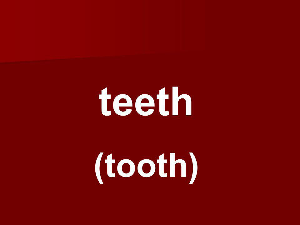 teeth (tooth)