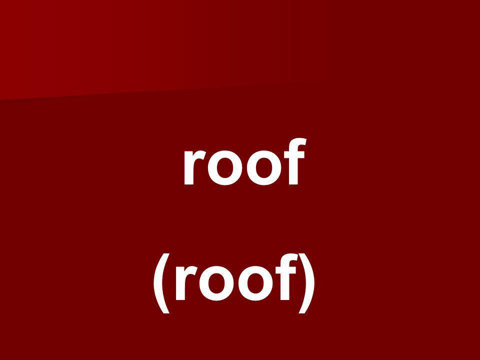 roof (roof)