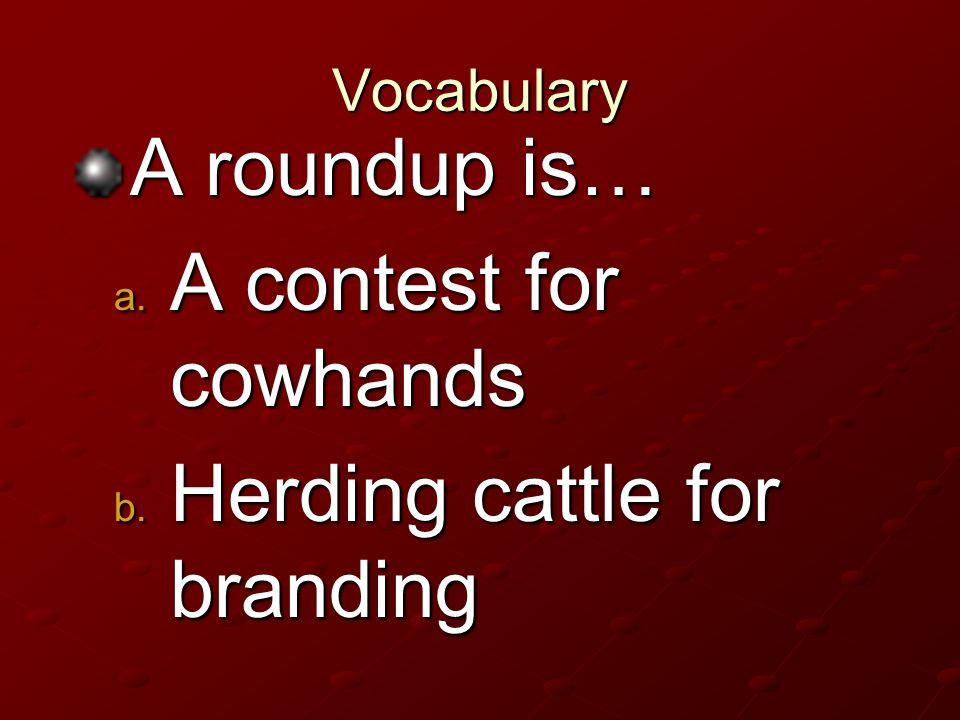 Herding cattle for branding