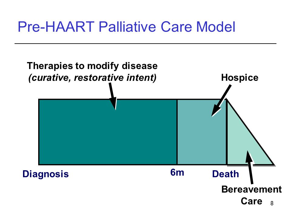 Pre-HAART Palliative Care Model