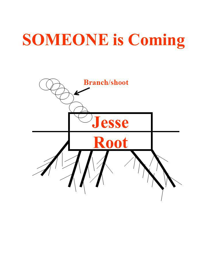 SOMEONE is Coming Jesse Root