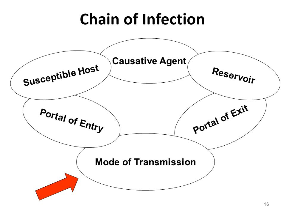 Chain of Infection Causative Agent Susceptible Host Reservoir