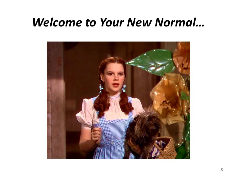 Welcome to Your New Normal…