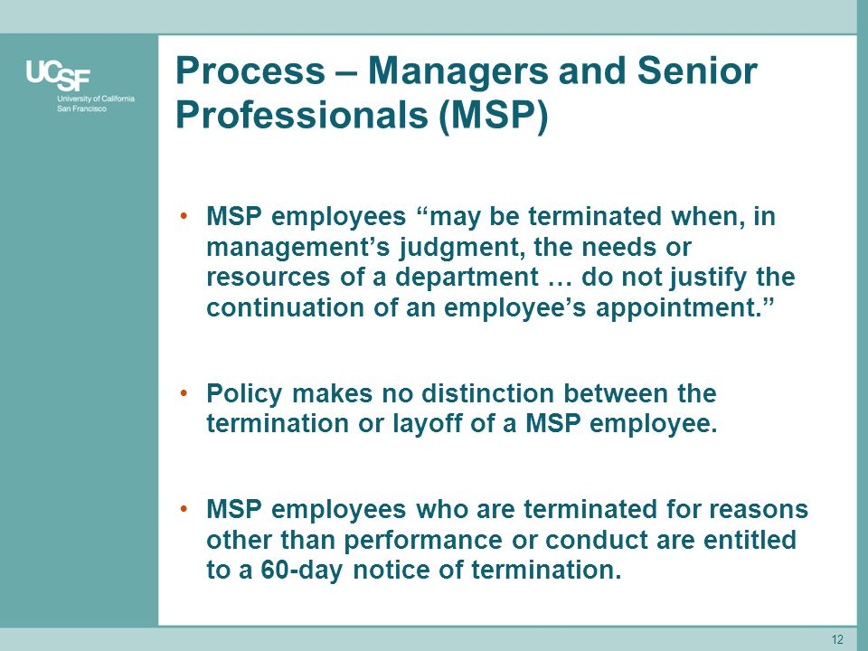 Process – Managers and Senior Professionals (MSP)