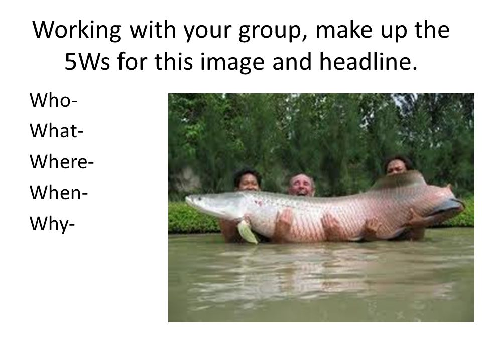 Working with your group, make up the 5Ws for this image and headline.
