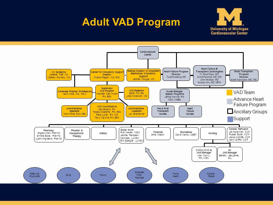 Adult VAD Program Ancillary Groups Support VAD Team