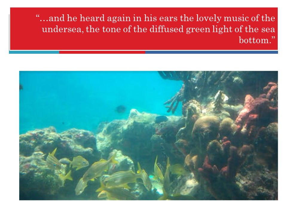 …and he heard again in his ears the lovely music of the undersea, the tone of the diffused green light of the sea bottom.