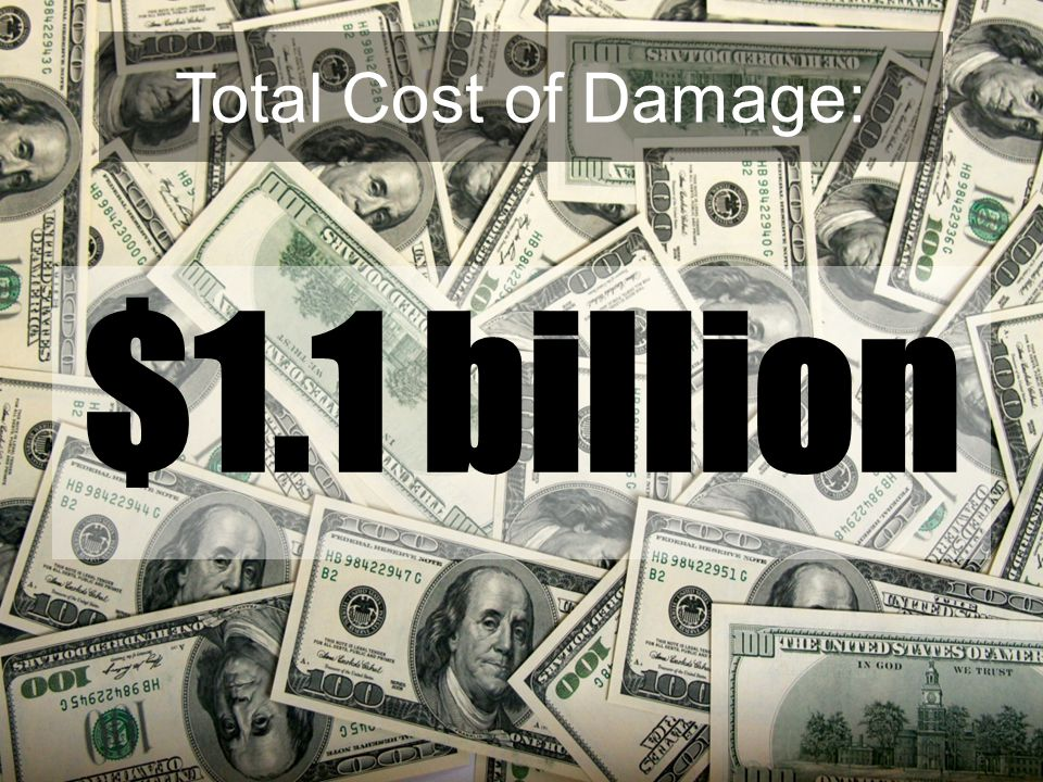Total Cost of Damage: $1.1 billion