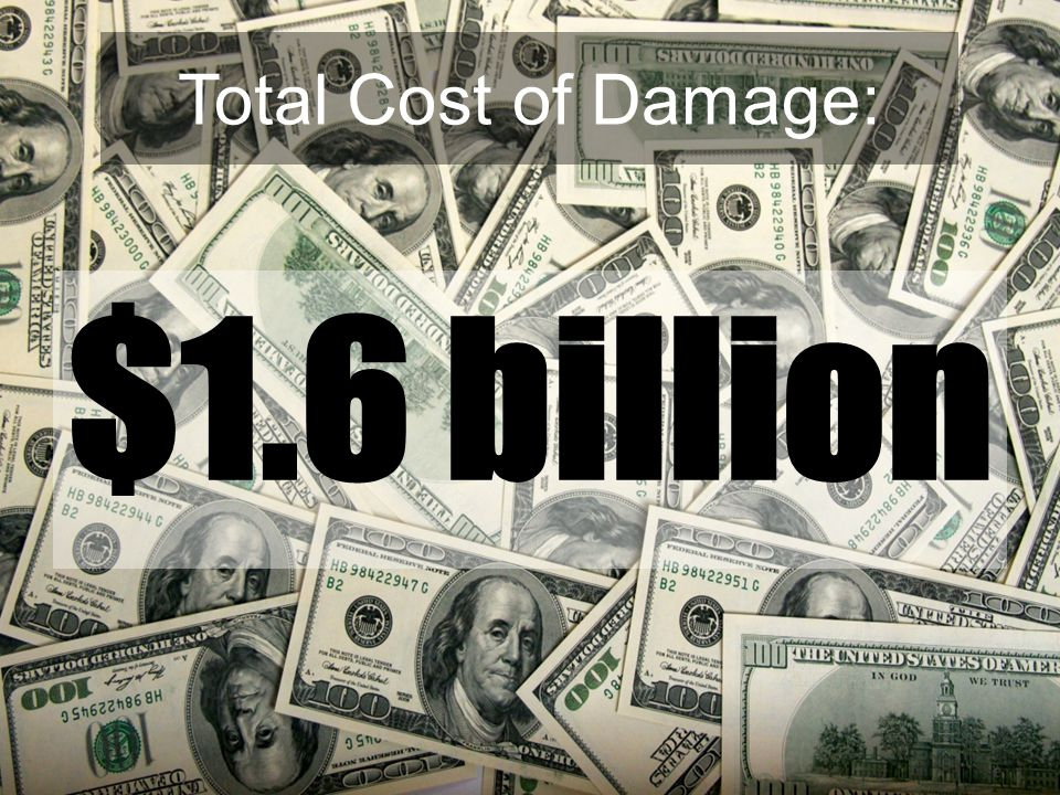 Total Cost of Damage: $1.6 billion