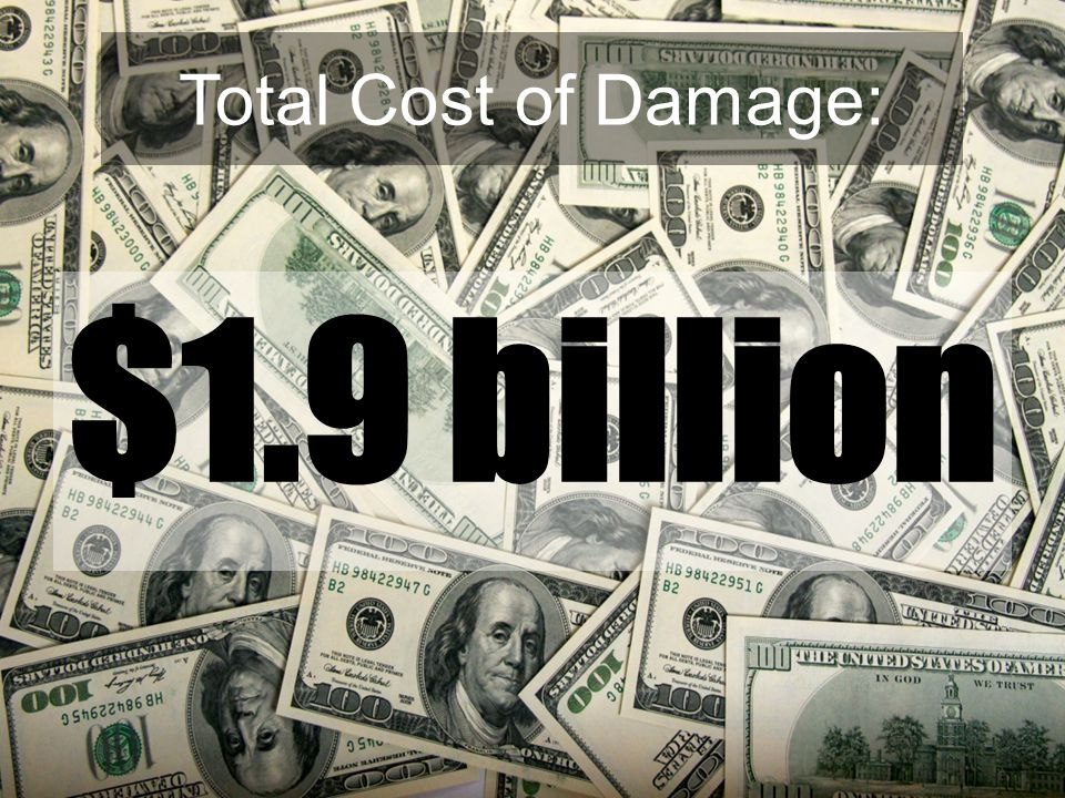 Total Cost of Damage: $1.9 billion