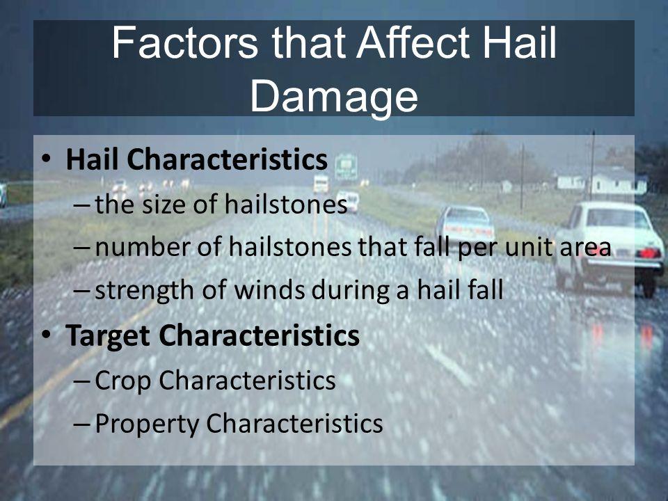Factors that Affect Hail Damage