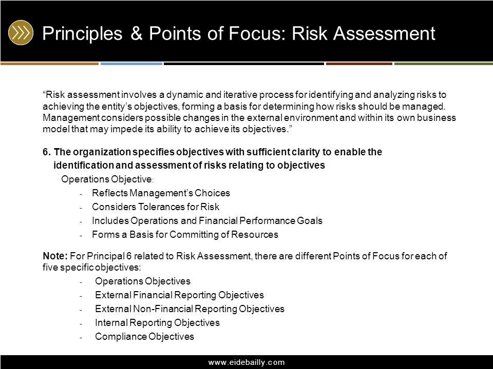 Principles & Points of Focus: Risk Assessment