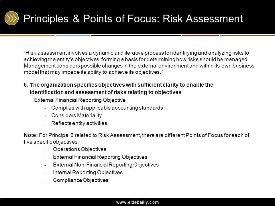 Principles & Points of Focus: Risk Assessment