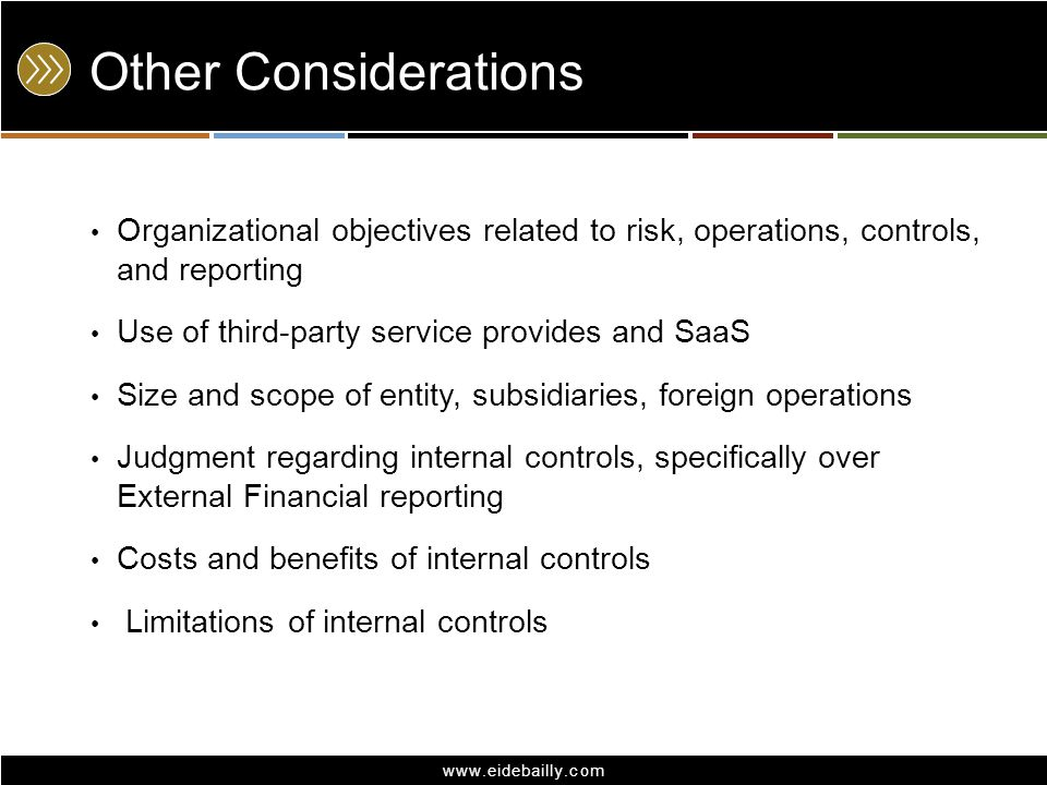 Other Considerations Organizational objectives related to risk, operations, controls, and reporting.