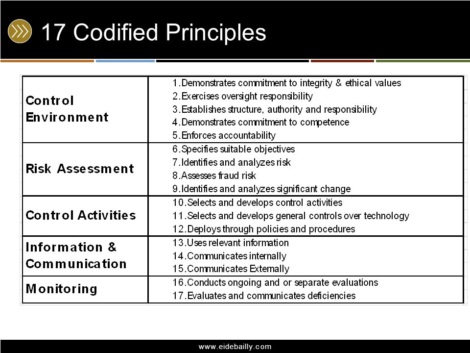 17 Codified Principles