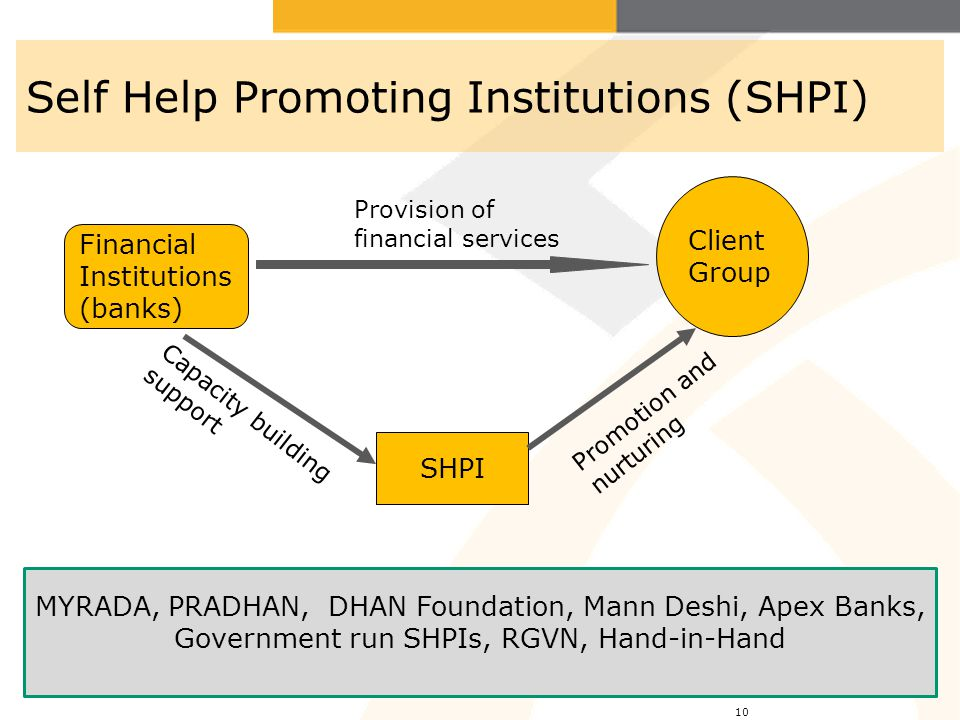 Self Help Promoting Institutions (SHPI)