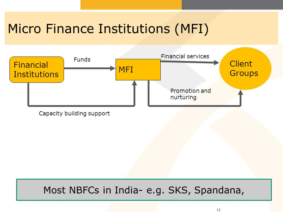 Micro Finance Institutions (MFI)