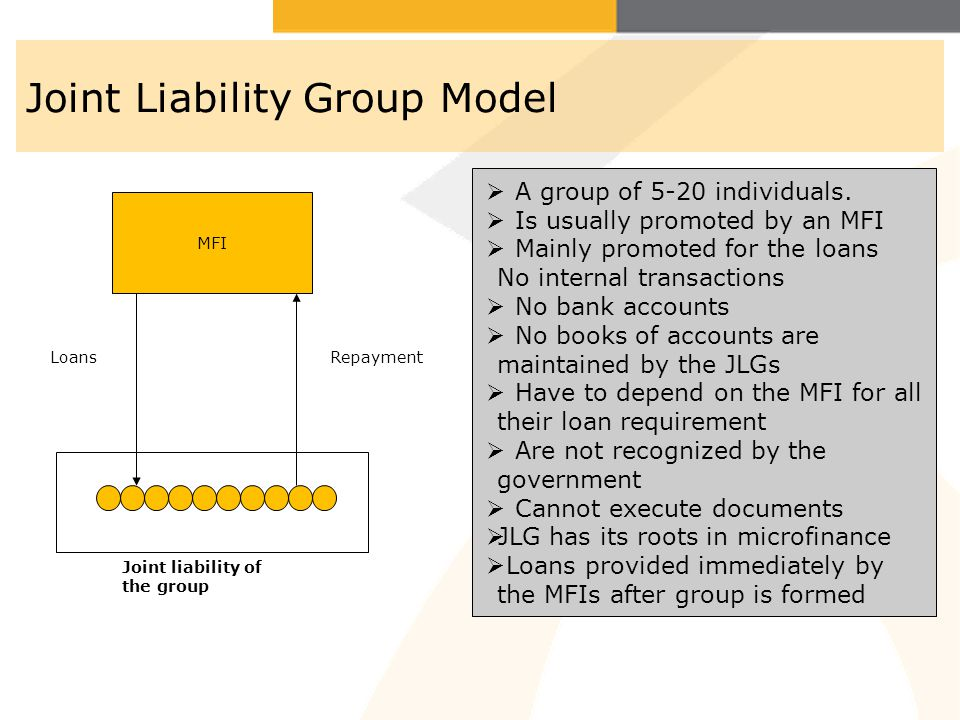 Joint Liability Group Model