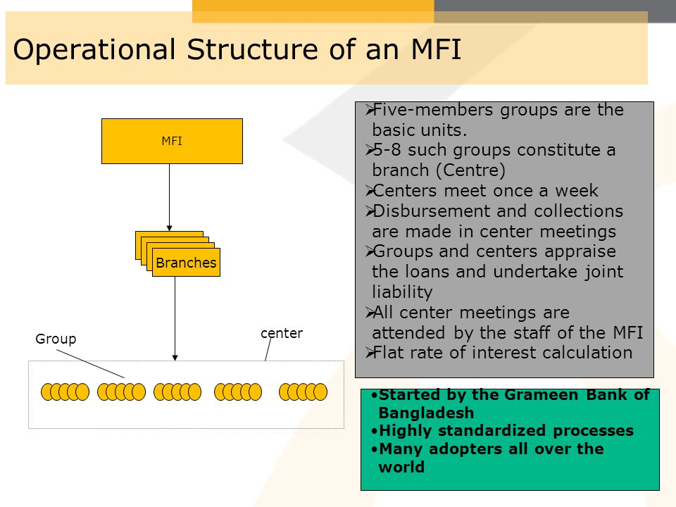 Operational Structure of an MFI