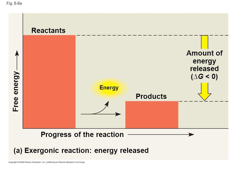 Amount of energy released (∆G < 0)