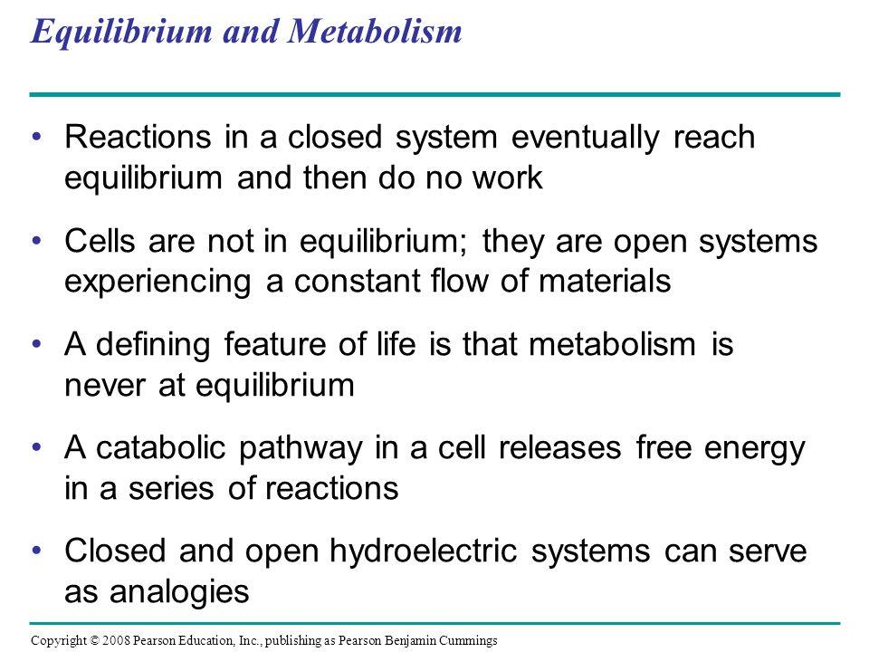 Equilibrium and Metabolism