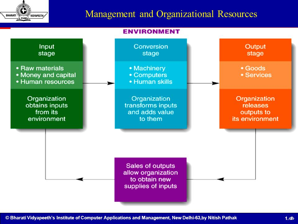 Management and Organizational Resources