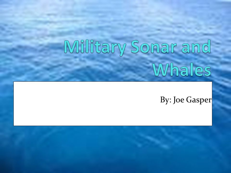 Military Sonar and Whales