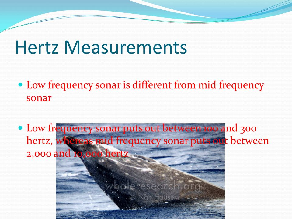 Hertz Measurements Low frequency sonar is different from mid frequency sonar.