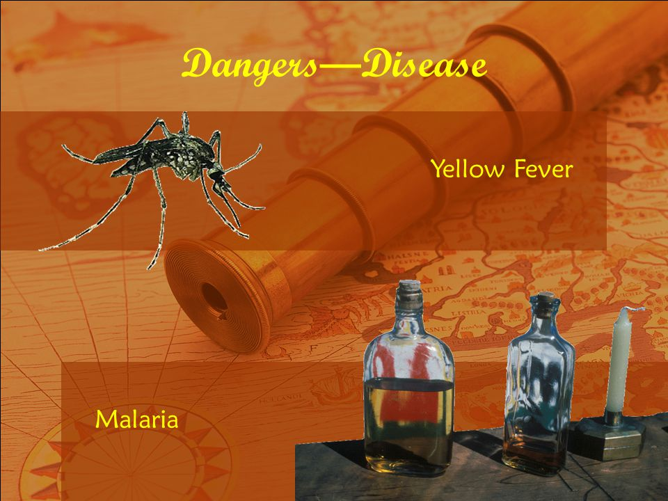 Dangers—Disease Yellow Fever Malaria