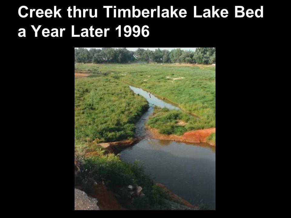 Creek thru Timberlake Lake Bed a Year Later 1996