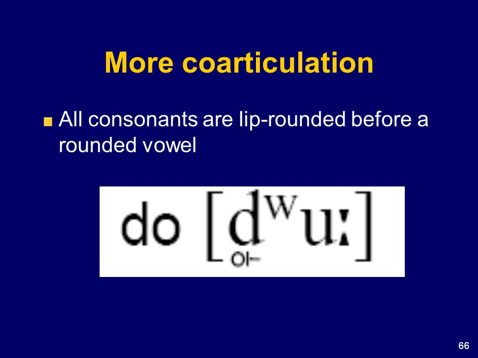 More coarticulation All consonants are lip-rounded before a rounded vowel