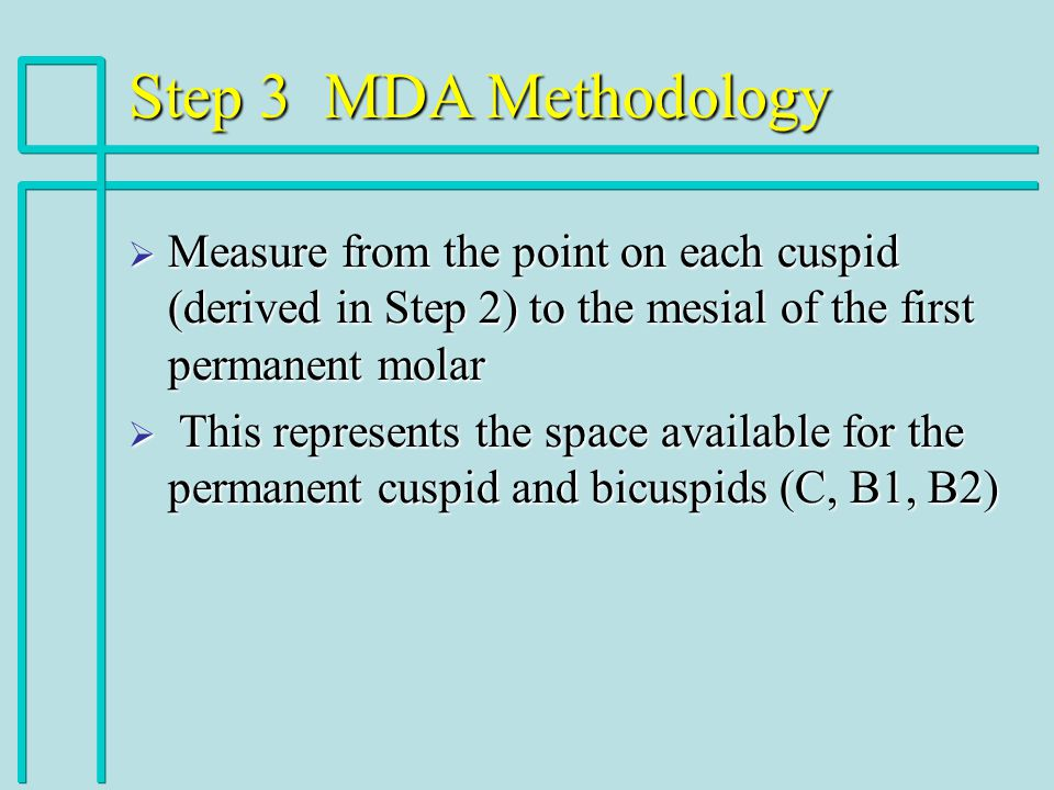 Step 3 MDA Methodology Measure from the point on each cuspid (derived in Step 2) to the mesial of the first permanent molar.