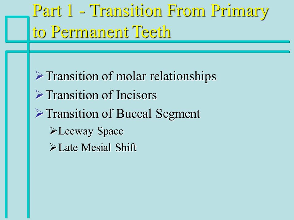Part 1 - Transition From Primary to Permanent Teeth